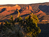 images/arizona/_6452314_small.jpg