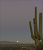 images/arizona/_6459251_2_small.jpg