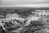 images/arizona/_k5_2532_bw_small.jpg
