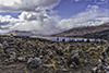 images/scotland/_6455858_small.jpg